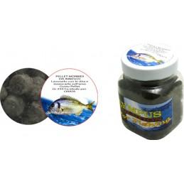 Black Pepper Oil 20mlx