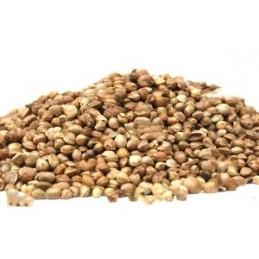 Hemp Seed 1kg